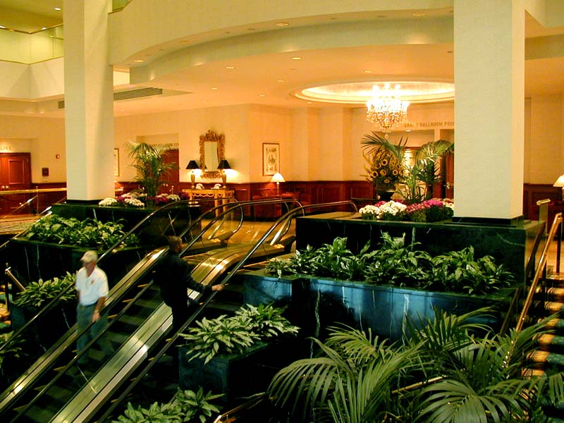 hook up hotels in nyc This is your guide to getting from jersey city to nyc up into regions a hotel that is close to new york city stay at one of the best hotels in jersey.
